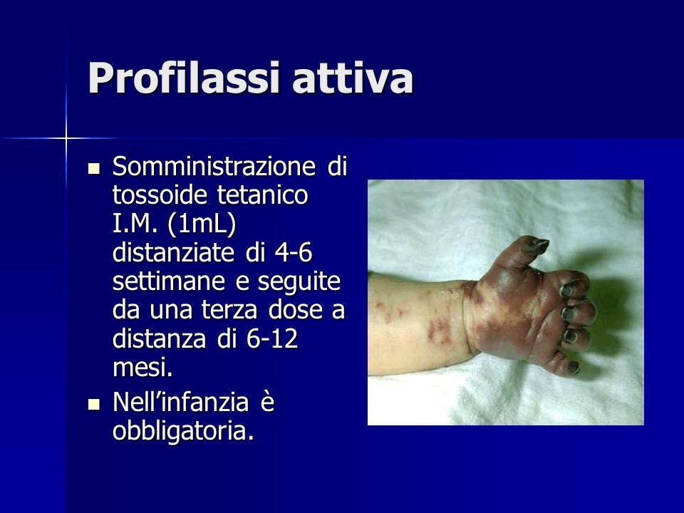 Profilassi attiva Somministrazione di tossoide tetanico I.M. (1mL) distanziate di 4-6 settimane e seguite da una terza dose a distanza di 6-12 mesi. S