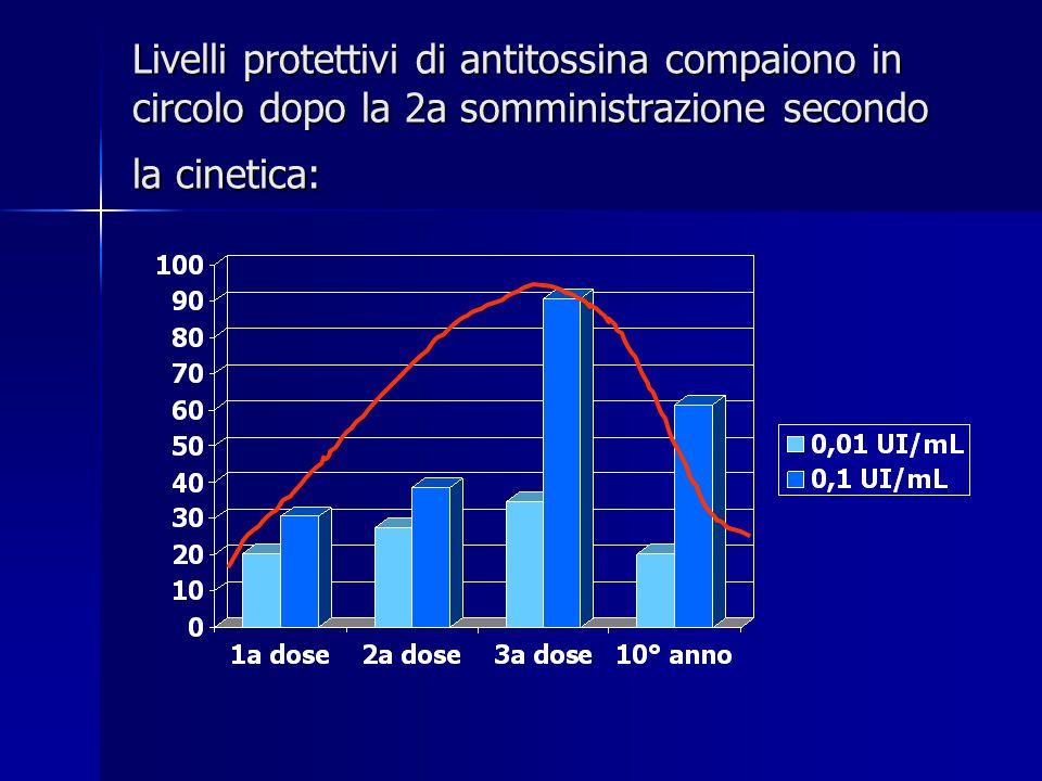 Livelli protettivi di antitossina compaiono in circolo dopo la 2a somministrazione secondo la cinetica: