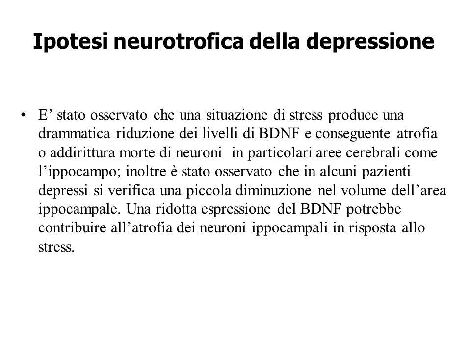 Ipotesi neurotrofica della depressione E' stato osservato che una situazione di stress produce una drammatica riduzione dei livelli di BDNF e consegue