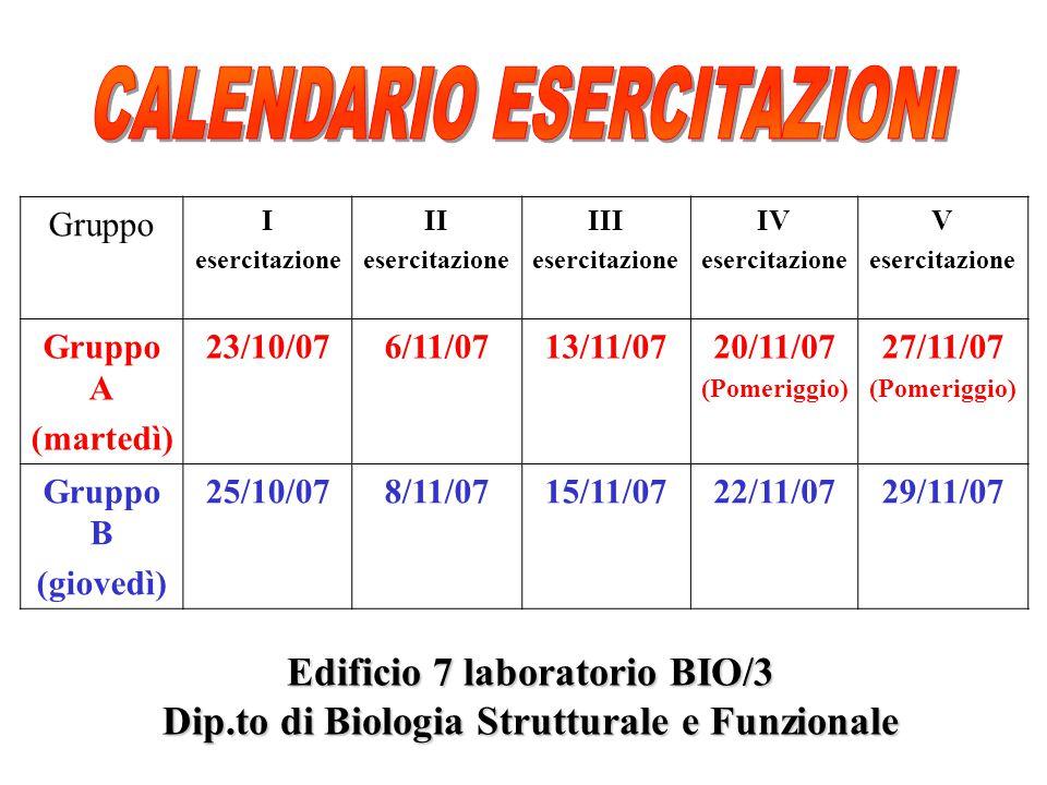 Gruppo I esercitazione II esercitazione III esercitazione IV esercitazione V esercitazione Gruppo A (martedì) 23/10/076/11/0713/11/0720/11/07 (Pomerig