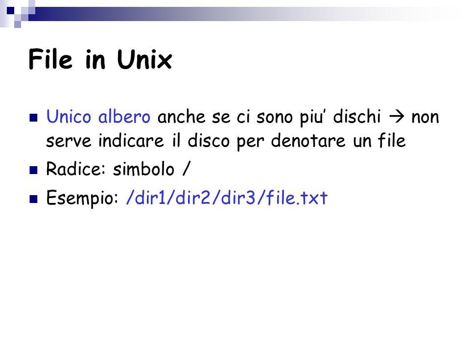 File in Unix Unico albero anche se ci sono piu' dischi  non serve indicare il disco per denotare un file Radice: simbolo / Esempio: /dir1/dir2/dir3/file.txt