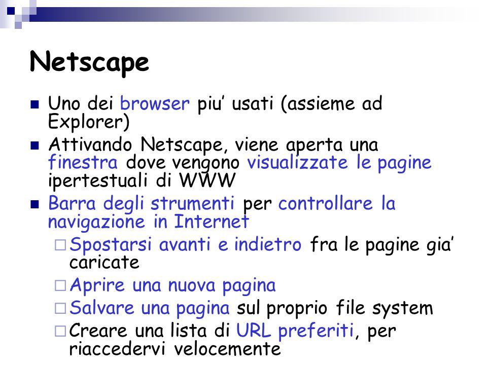 Netscape Uno dei browser piu' usati (assieme ad Explorer) Attivando Netscape, viene aperta una finestra dove vengono visualizzate le pagine ipertestuali di WWW Barra degli strumenti per controllare la navigazione in Internet  Spostarsi avanti e indietro fra le pagine gia' caricate  Aprire una nuova pagina  Salvare una pagina sul proprio file system  Creare una lista di URL preferiti, per riaccedervi velocemente