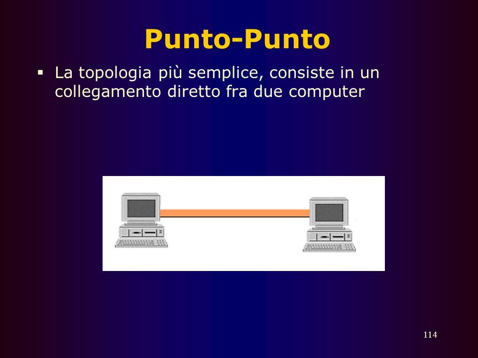 113 Multipunto or bus  Multipunto o Bus – tutti i dispositivi sono collegati ad un mezzo condiviso (bus)