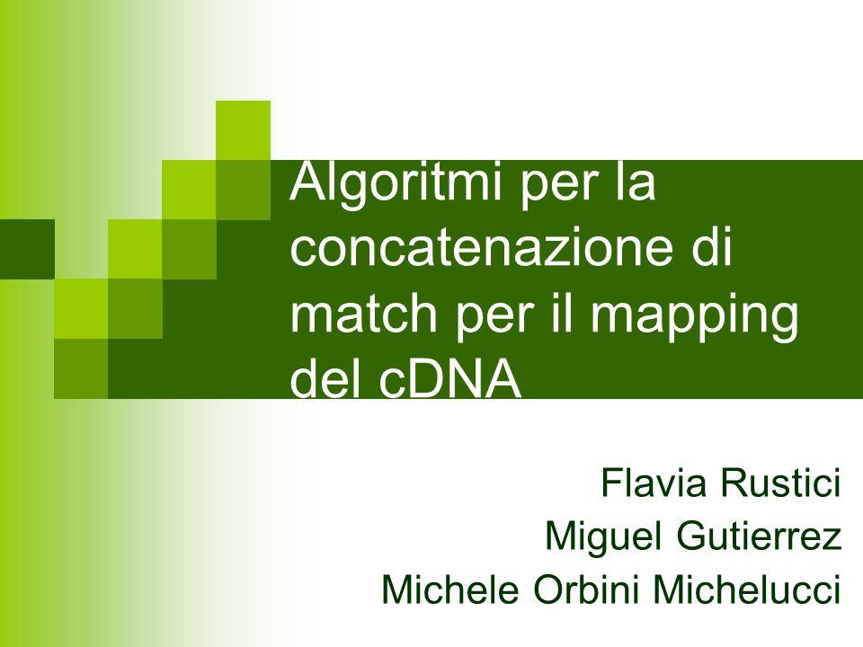 Algoritmi per la concatenazione di match per il mapping del cDNA Flavia Rustici Miguel Gutierrez Michele Orbini Michelucci