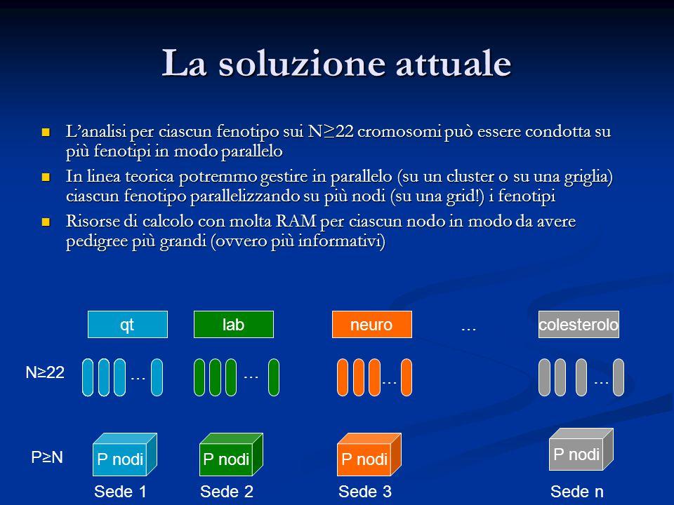 La soluzione attuale L'analisi per ciascun fenotipo sui N≥22 cromosomi può essere condotta su più fenotipi in modo parallelo L'analisi per ciascun fenotipo sui N≥22 cromosomi può essere condotta su più fenotipi in modo parallelo In linea teorica potremmo gestire in parallelo (su un cluster o su una griglia) ciascun fenotipo parallelizzando su più nodi (su una grid!) i fenotipi In linea teorica potremmo gestire in parallelo (su un cluster o su una griglia) ciascun fenotipo parallelizzando su più nodi (su una grid!) i fenotipi Risorse di calcolo con molta RAM per ciascun nodo in modo da avere pedigree più grandi (ovvero più informativi) Risorse di calcolo con molta RAM per ciascun nodo in modo da avere pedigree più grandi (ovvero più informativi) qtlabqtlabqtlabqtlabqtlabqtlabcolesteroloneuroqtlab … … …… … N≥22 P nodi P≥N Sede 1Sede 2Sede 3Sede n