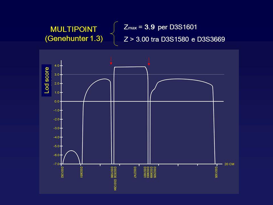 MULTIPOINT (Genehunter 1.3) Z max = 3.9 per D3S1601 Z > 3.00 tra D3S1580 e D3S3669 Lod score