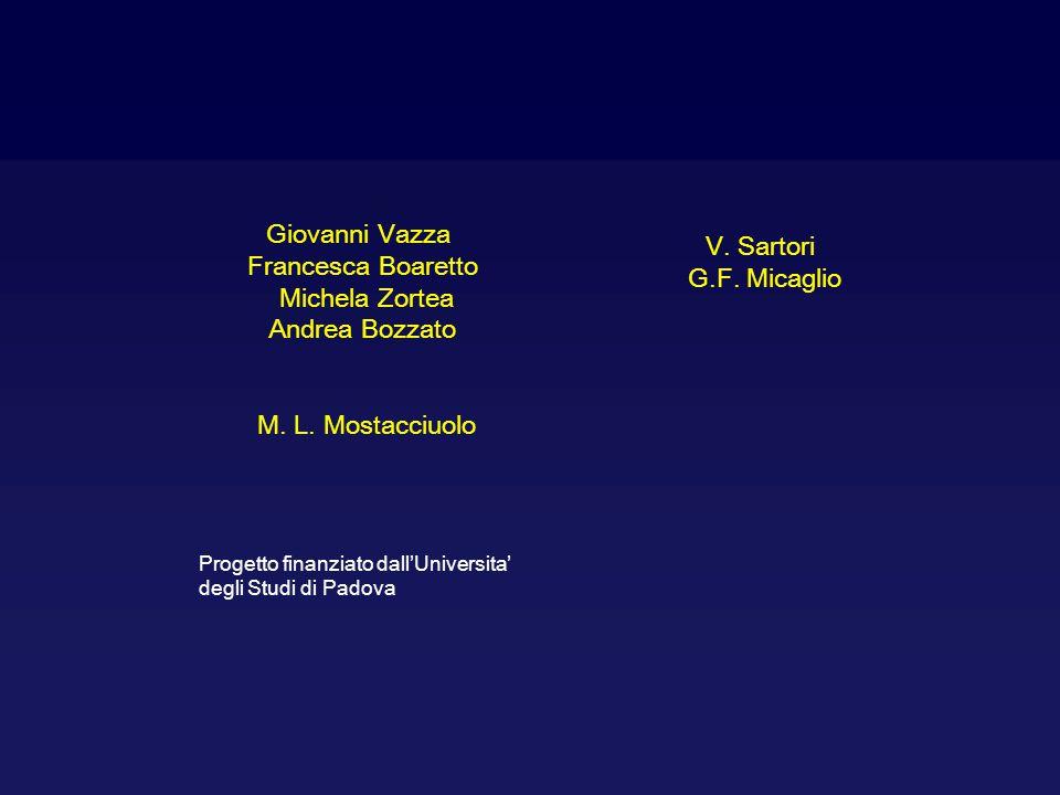Giovanni Vazza Francesca Boaretto Michela Zortea Andrea Bozzato M. L. Mostacciuolo V. Sartori G.F. Micaglio Progetto finanziato dall'Universita' degli