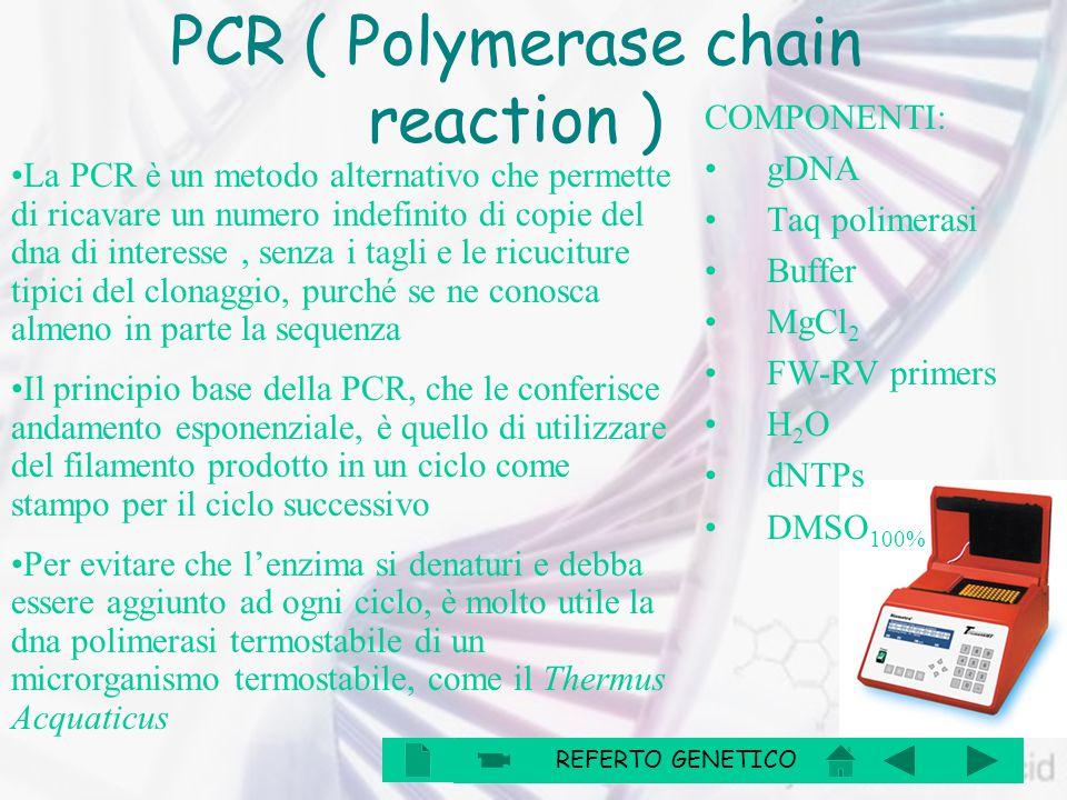 La PCR è un metodo alternativo che permette di ricavare un numero indefinito di copie del dna di interesse, senza i tagli e le ricuciture tipici del c