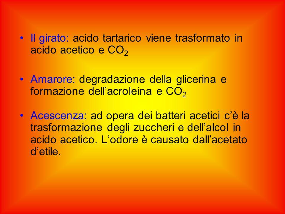 Il girato: acido tartarico viene trasformato in acido acetico e CO 2 Amarore: degradazione della glicerina e formazione dell'acroleina e CO 2 Acescenza: ad opera dei batteri acetici c'è la trasformazione degli zuccheri e dell'alcol in acido acetico.