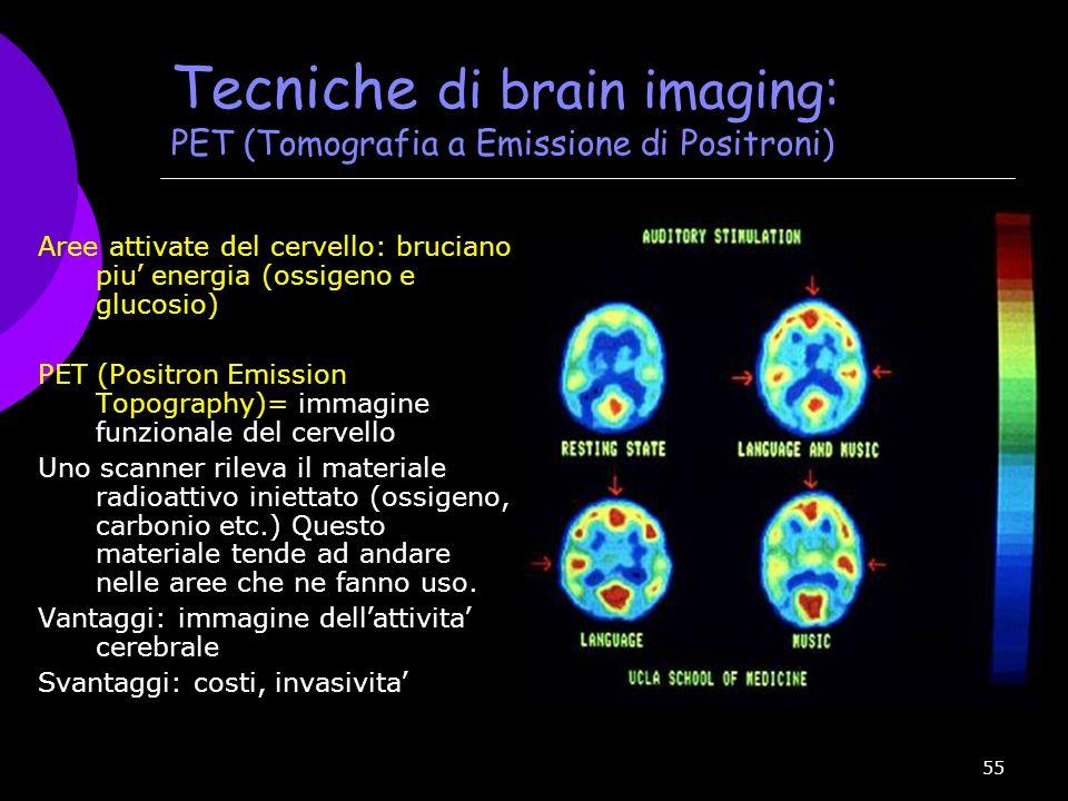 55 Tecniche di brain imaging: PET (Tomografia a Emissione di Positroni) Aree attivate del cervello: bruciano piu ' energia (ossigeno e glucosio) PET (
