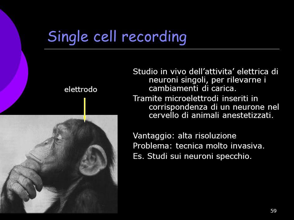59 Single cell recording Studio in vivo dell'attivita' elettrica di neuroni singoli, per rilevarne i cambiamenti di carica. Tramite microelettrodi ins