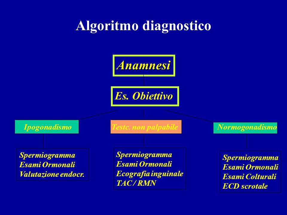 Diagnostica chirurgica Esplorazione didimo - epididimaria Vesciculo-deferentografia Biopsia testicolare