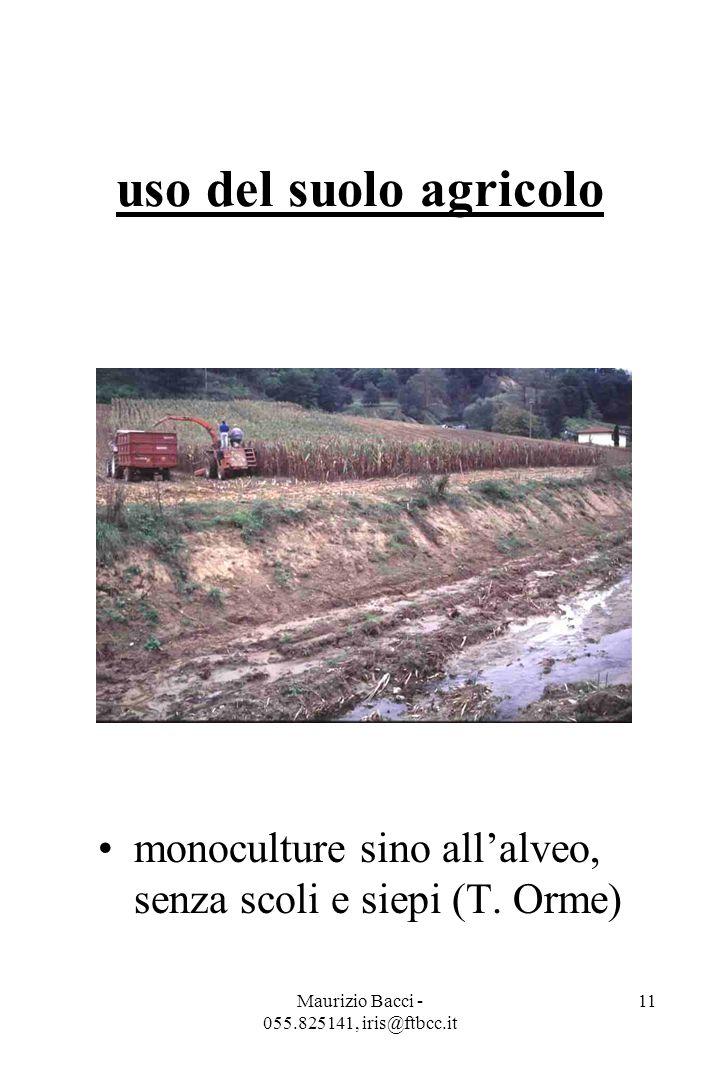 Maurizio Bacci - 055.825141, iris@ftbcc.it 11 uso del suolo agricolo monoculture sino all'alveo, senza scoli e siepi (T.