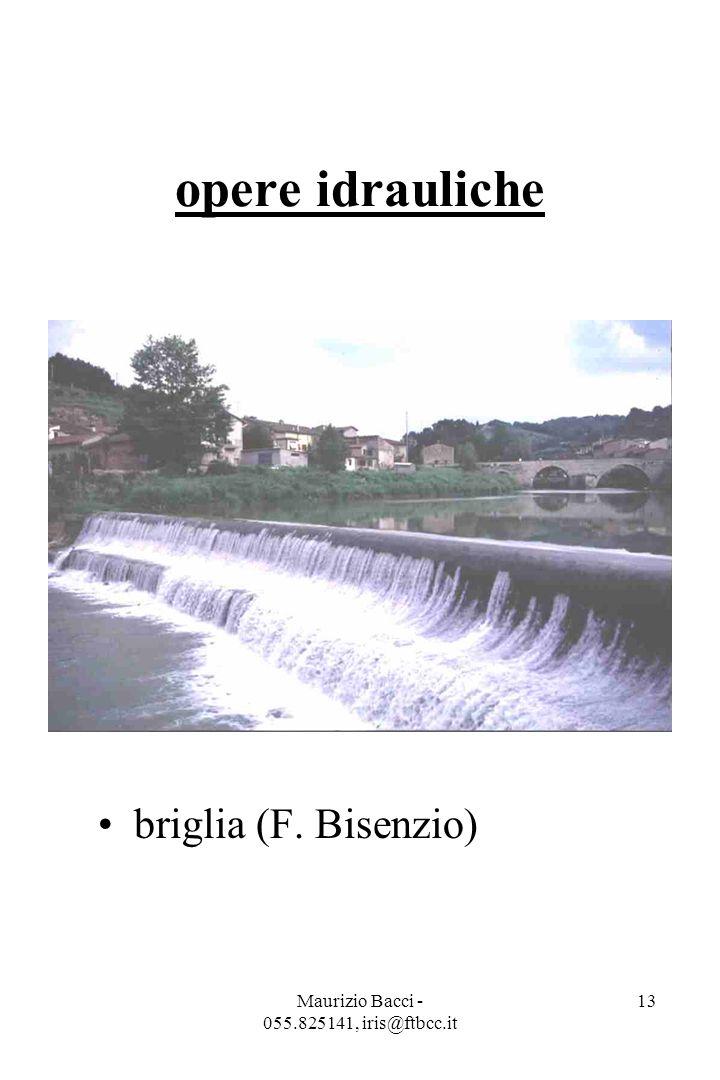 Maurizio Bacci - 055.825141, iris@ftbcc.it 13 opere idrauliche briglia (F. Bisenzio)