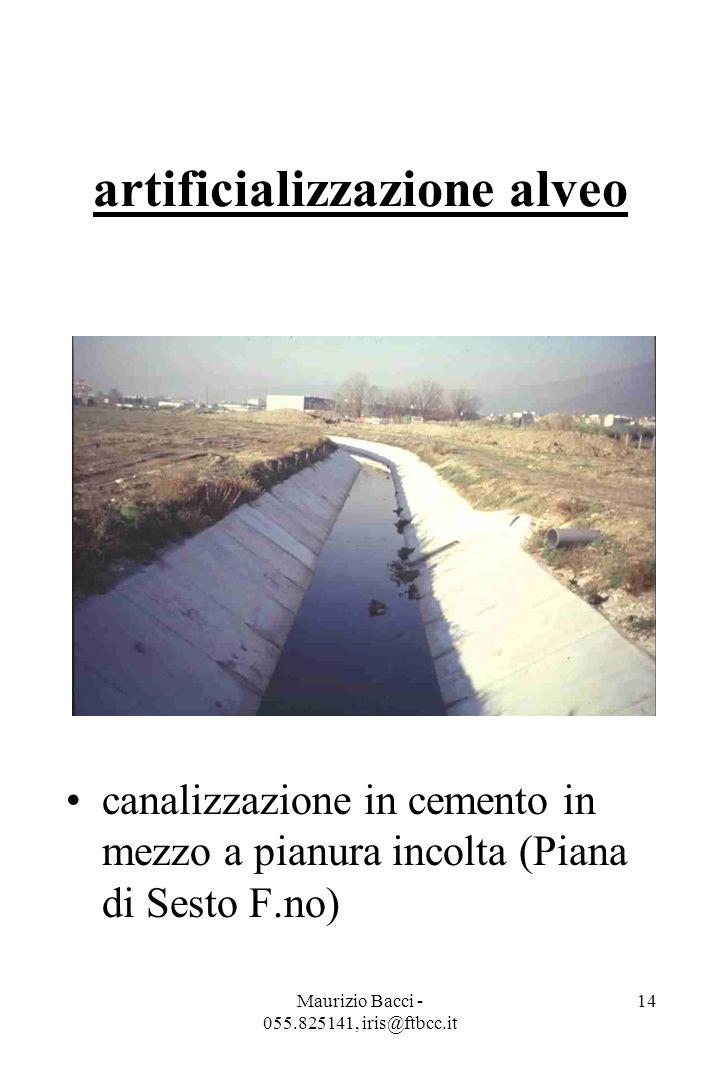 Maurizio Bacci - 055.825141, iris@ftbcc.it 14 artificializzazione alveo canalizzazione in cemento in mezzo a pianura incolta (Piana di Sesto F.no)