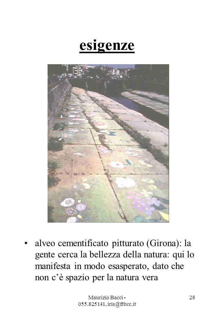 Maurizio Bacci - 055.825141, iris@ftbcc.it 28 esigenze alveo cementificato pitturato (Girona): la gente cerca la bellezza della natura: qui lo manifesta in modo esasperato, dato che non c'è spazio per la natura vera