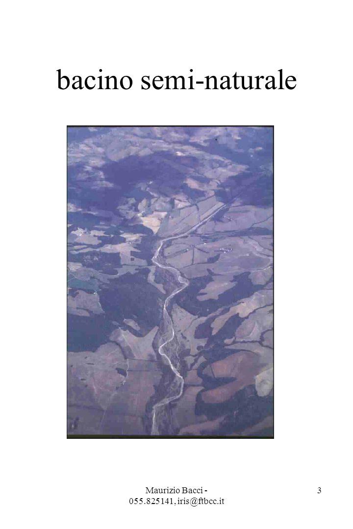 Maurizio Bacci - 055.825141, iris@ftbcc.it 3 bacino semi-naturale