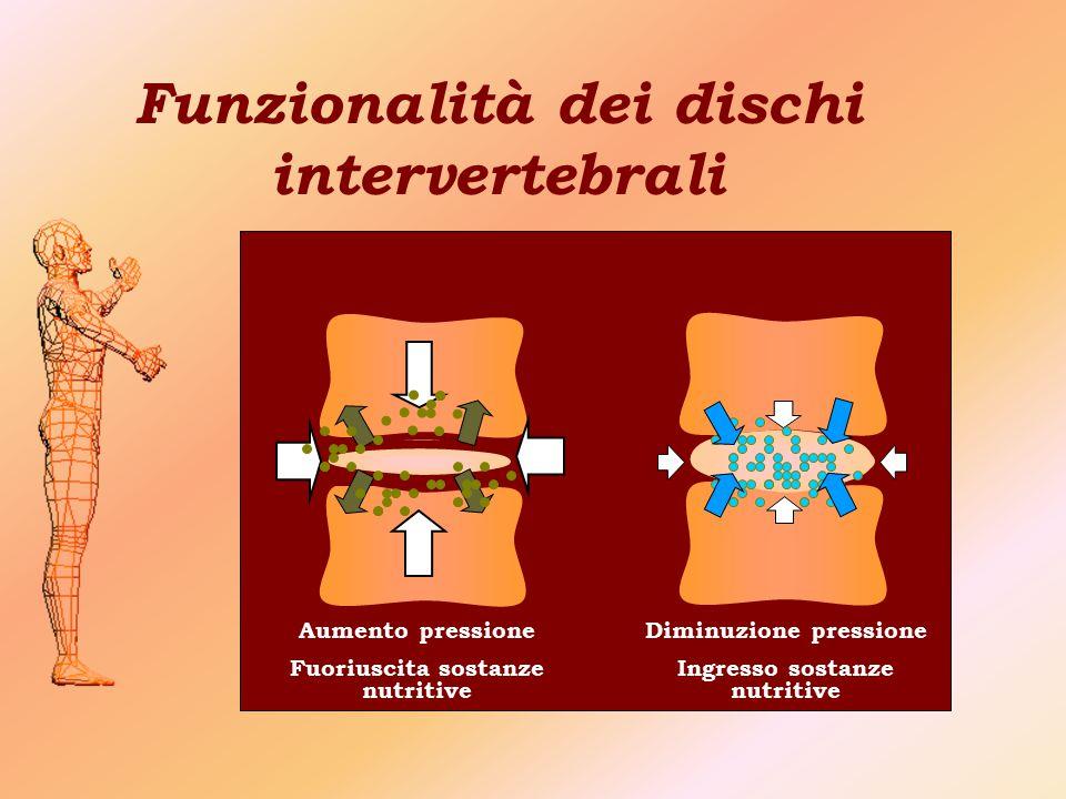Funzionalità dei dischi intervertebrali Aumento pressione Fuoriuscita sostanze nutritive Diminuzione pressione Ingresso sostanze nutritive