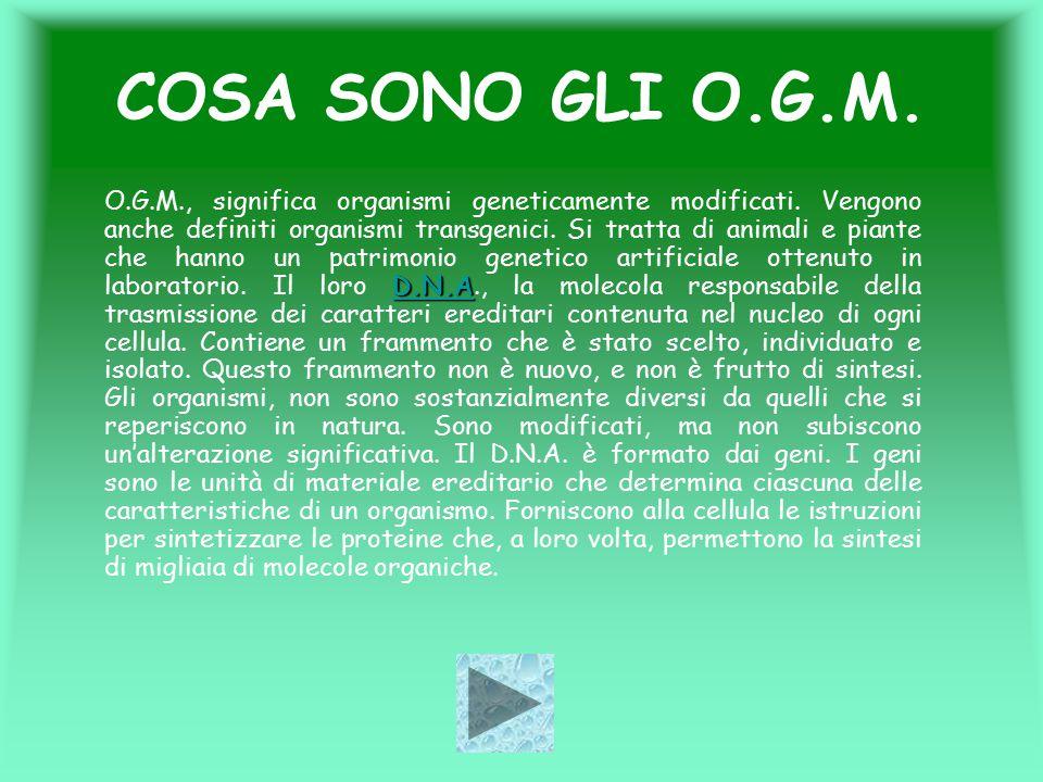 COSA SONO GLI O.G.M. D.N.A D.N.A O.G.M., significa organismi geneticamente modificati. Vengono anche definiti organismi transgenici. Si tratta di anim