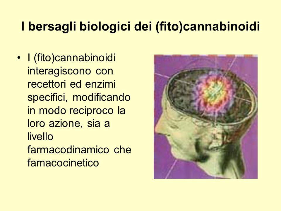 I bersagli biologici dei (fito)cannabinoidi I (fito)cannabinoidi interagiscono con recettori ed enzimi specifici, modificando in modo reciproco la lor