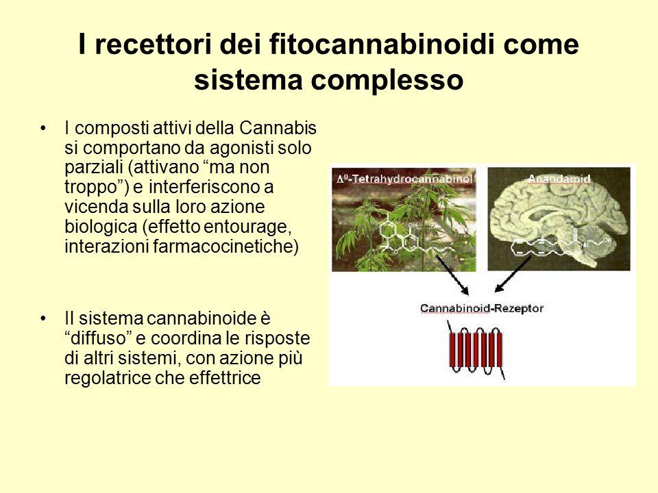 """I recettori dei fitocannabinoidi come sistema complesso I composti attivi della Cannabis si comportano da agonisti solo parziali (attivano """"ma non tro"""