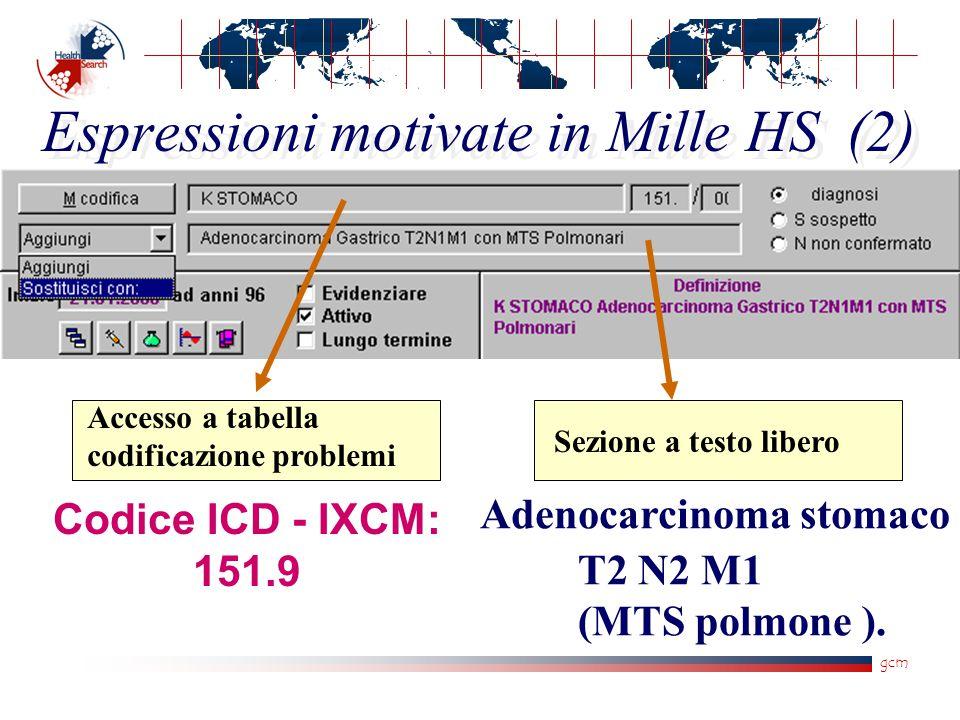 gcm Espressioni motivate in Mille HS (2) Accesso a tabella codificazione problemi Sezione a testo libero Adenocarcinoma stomaco T2 N2 M1 (MTS polmone