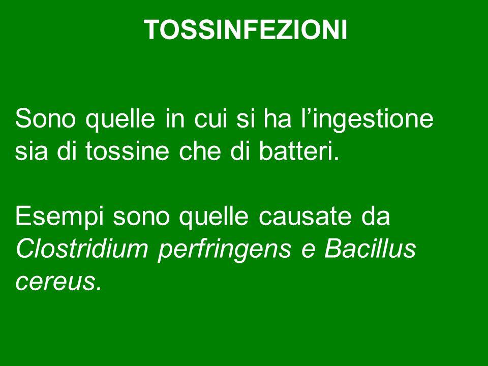 Sono quelle in cui si ha l'ingestione sia di tossine che di batteri. Esempi sono quelle causate da Clostridium perfringens e Bacillus cereus. TOSSINFE