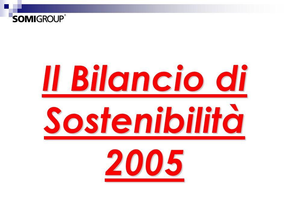 Il Bilancio di Sostenibilità 2005