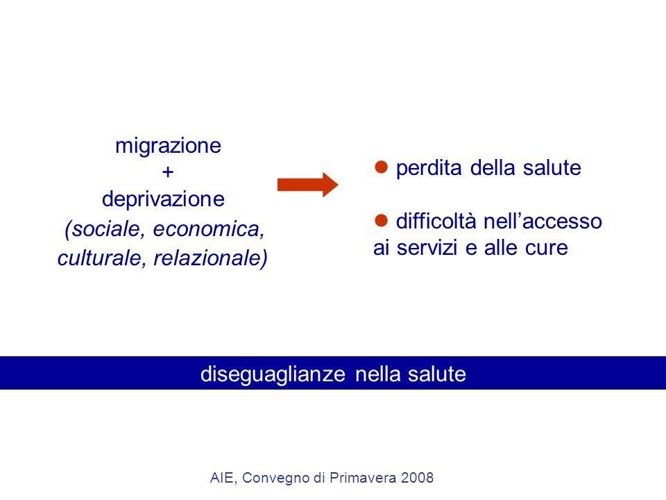 migrazione + deprivazione (sociale, economica, culturale, relazionale) perdita della salute difficoltà nell'accesso ai servizi e alle cure diseguaglianze nella salute AIE, Convegno di Primavera 2008
