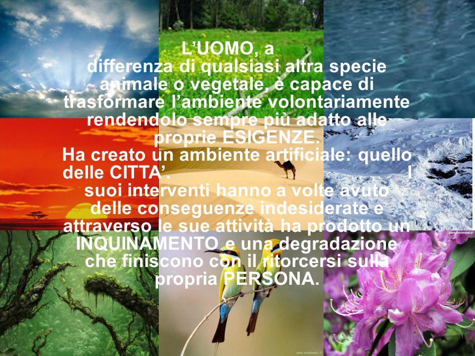 L'UOMO, a differenza di qualsiasi altra specie animale o vegetale, è capace di trasformare l'ambiente volontariamente rendendolo sempre più adatto all