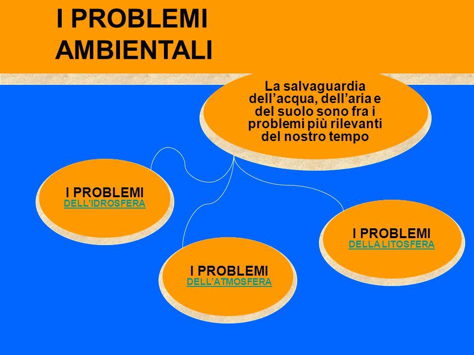 Inquinamento CIVILE I problemi dell' IDROSFERA ALLUVIONI Inquinamento INDUSTRIALE Inquinamento TERMICO Inquinamento da PETROLIO Inquinamento AGRICOLO CALORE INDUSTRIALE ANTIPA RASSITAR I FERTILIZ ZANTI DISER BANTI EUTROFIZ ZAZIONE METALLISOLVENTI SCARICHI OLEOSI