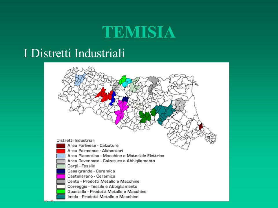 TEMISIA I Distretti Industriali