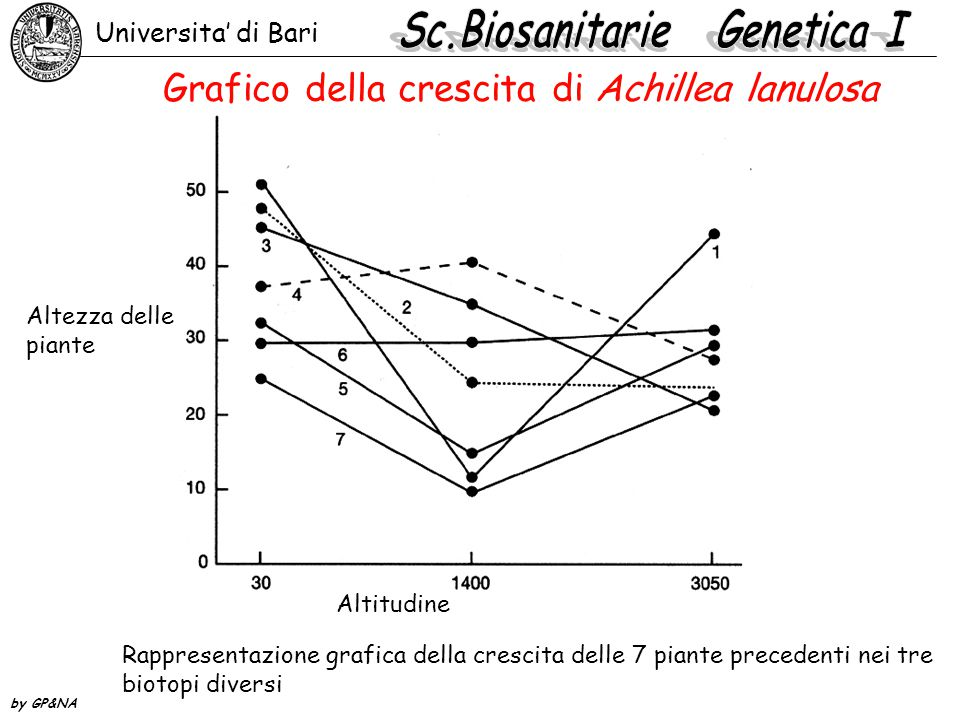 Universita' di Bari by GP&NA Grafico della crescita di Achillea lanulosa Rappresentazione grafica della crescita delle 7 piante precedenti nei tre bio