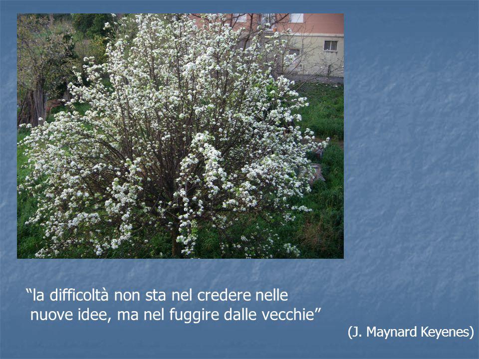 """""""la difficoltà non sta nel credere nelle nuove idee, ma nel fuggire dalle vecchie"""" (J. Maynard Keyenes)"""