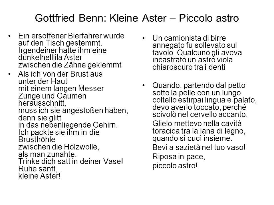 Gottfried Benn: Kleine Aster – Piccolo astro Ein ersoffener Bierfahrer wurde auf den Tisch gestemmt. Irgendeiner hatte ihm eine dunkelhelllila Aster z