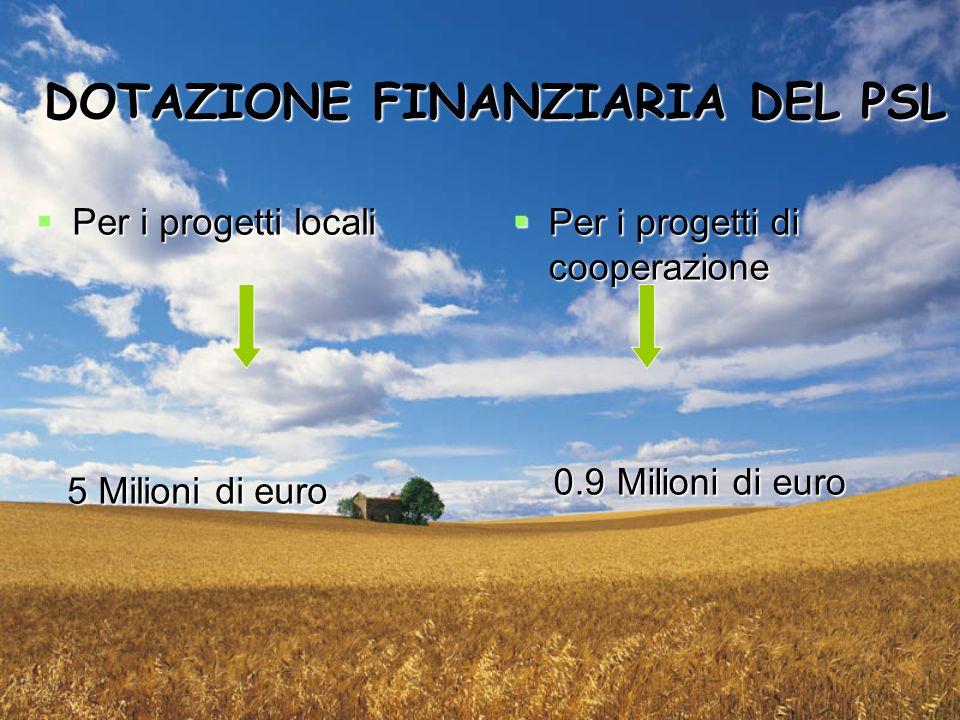 DOTAZIONE FINANZIARIA DEL PSL  Per i progetti locali 5 Milioni di euro 5 Milioni di euro  Per i progetti di cooperazione 0.9 Milioni di euro 0.9 Milioni di euro