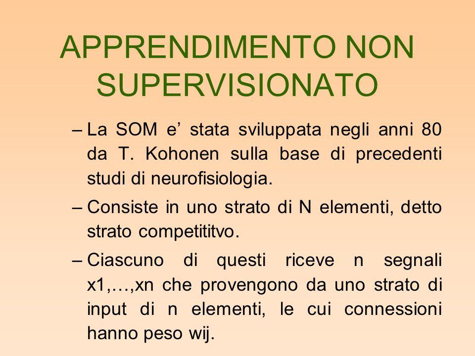 APPRENDIMENTO NON SUPERVISIONATO –La SOM e' stata sviluppata negli anni 80 da T. Kohonen sulla base di precedenti studi di neurofisiologia. –Consiste