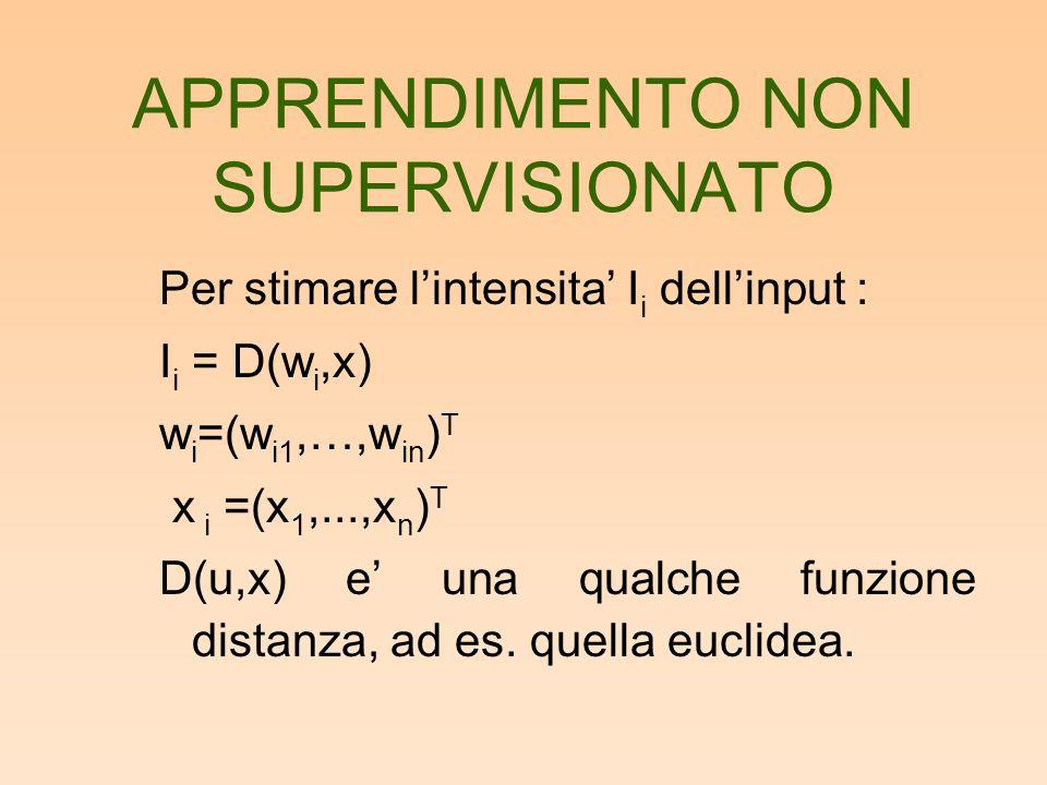 Per stimare l'intensita' I i dell'input : I i = D(w i,x) w i =(w i1,…,w in ) T x i =(x 1,...,x n ) T D(u,x) e' una qualche funzione distanza, ad es. q