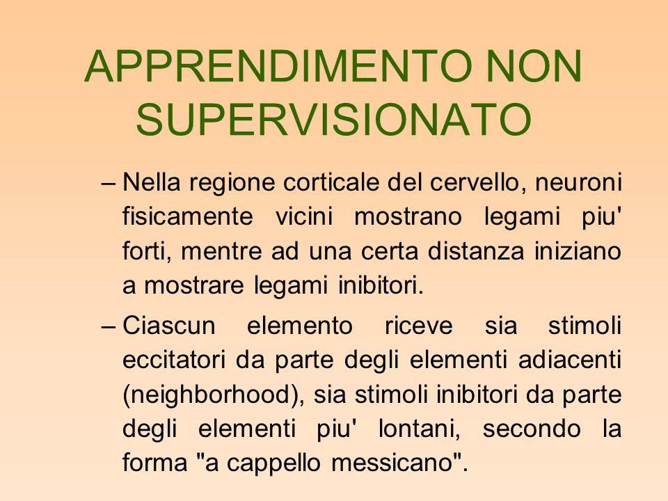 APPRENDIMENTO NON SUPERVISIONATO –Nella regione corticale del cervello, neuroni fisicamente vicini mostrano legami piu' forti, mentre ad una certa dis