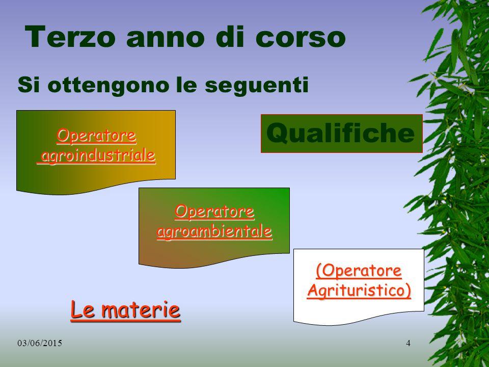 03/06/20154 Operatore agroindustriale Operatore agroambientale (Operatore Agrituristico) Si ottengono le seguenti Qualifiche Le materie Le materie Terzo anno di corso