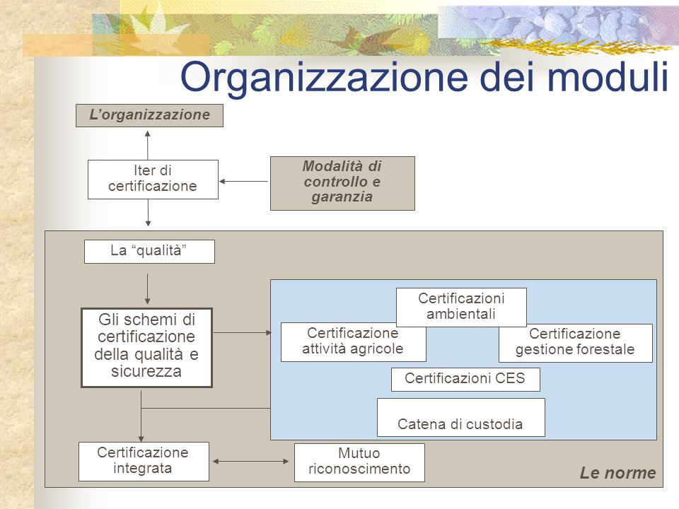 """Le norme Organizzazione dei moduli Modalità di controllo e garanzia La """"qualità"""" Gli schemi di certificazione della qualità e sicurezza Catena di cust"""