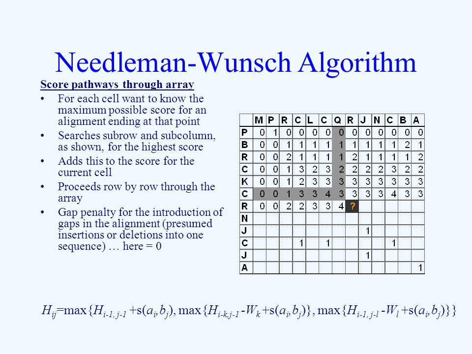Needleman-Wunsch Algorithm Score pathways through array For each cell want to know the maximum possible score for an alignment ending at that point Searches subrow and subcolumn, as shown, for the highest score Adds this to the score for the current cell Proceeds row by row through the array Gap penalty for the introduction of gaps in the alignment (presumed insertions or deletions into one sequence) … here = 0 H ij =max{H i-1, j-1 +s(a i,b j ), max{H i-k,j-1 -W k +s(a i,b j )}, max{H i-1, j-l -W l +s(a i,b j )}}