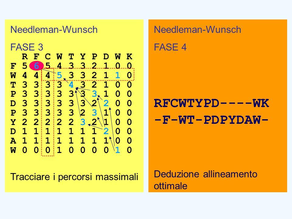 Needleman-Wunsch FASE 4 RFCWTYPD----WK -F-WT-PDPYDAW- Deduzione allineamento ottimale Needleman-Wunsch FASE 3 R F C W T Y P D W K F 5 6 5 4 3 3 2 1 0