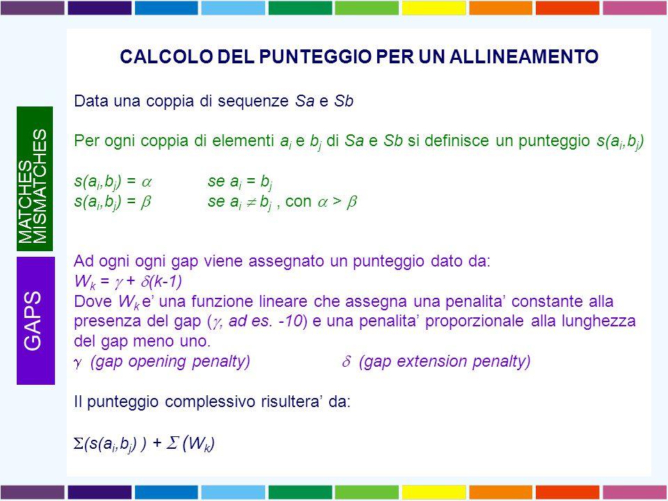 CALCOLO DEL PUNTEGGIO PER UN ALLINEAMENTO Data una coppia di sequenze Sa e Sb Per ogni coppia di elementi a i e b j di Sa e Sb si definisce un punteggio s(a i,b j ) s(a i,b j ) =  se a i = b j s(a i,b j ) =  se a i  b j, con  >  Ad ogni ogni gap viene assegnato un punteggio dato da: W k =  +  (k-1) Dove W k e' una funzione lineare che assegna una penalita' constante alla presenza del gap ( , ad es.