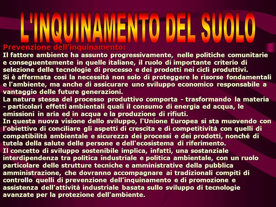 Prevenzione dell'inquinamento: Il fattore ambiente ha assunto progressivamente, nelle politiche comunitarie e conseguentemente in quelle italiane, il ruolo di importante criterio di selezione delle tecnologie di processo e dei prodotti nei cicli produttivi.