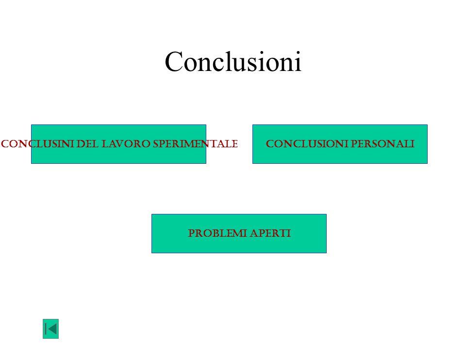Conclusioni Conclusini del lavoro sperimentaleConclusioni personali Problemi aperti