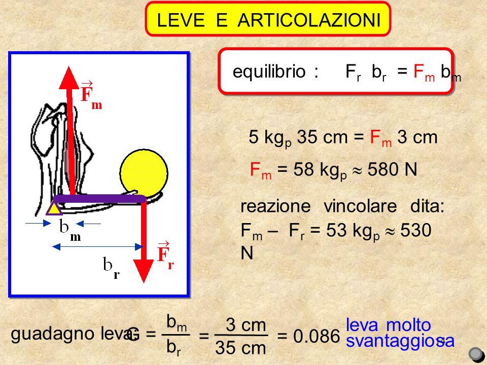 14 LEVE E ARTICOLAZIONI equilibrio : F r b r = F m b m reazione vincolare dita: 5 kg p 35 cm = F m 3 cm F m = 58 kg p  580 N F m – F r = 53 kg p  530 N guadagno leva: G = bmbm brbr = 3 cm 35 cm = 0.086 leva molto svantaggiosa