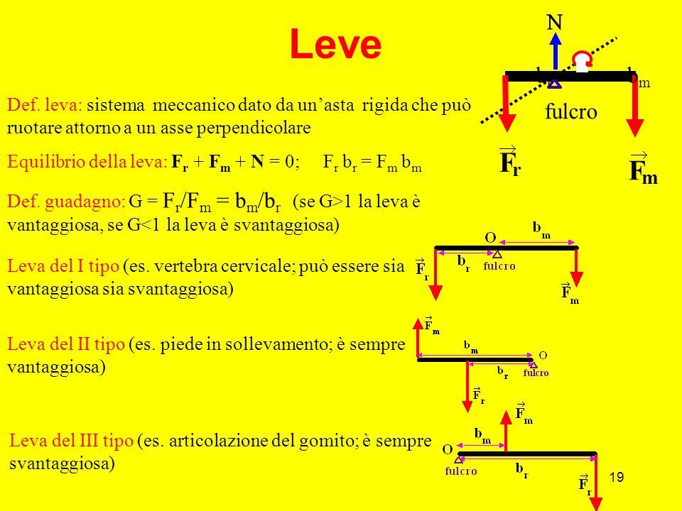 19 Leve Def.