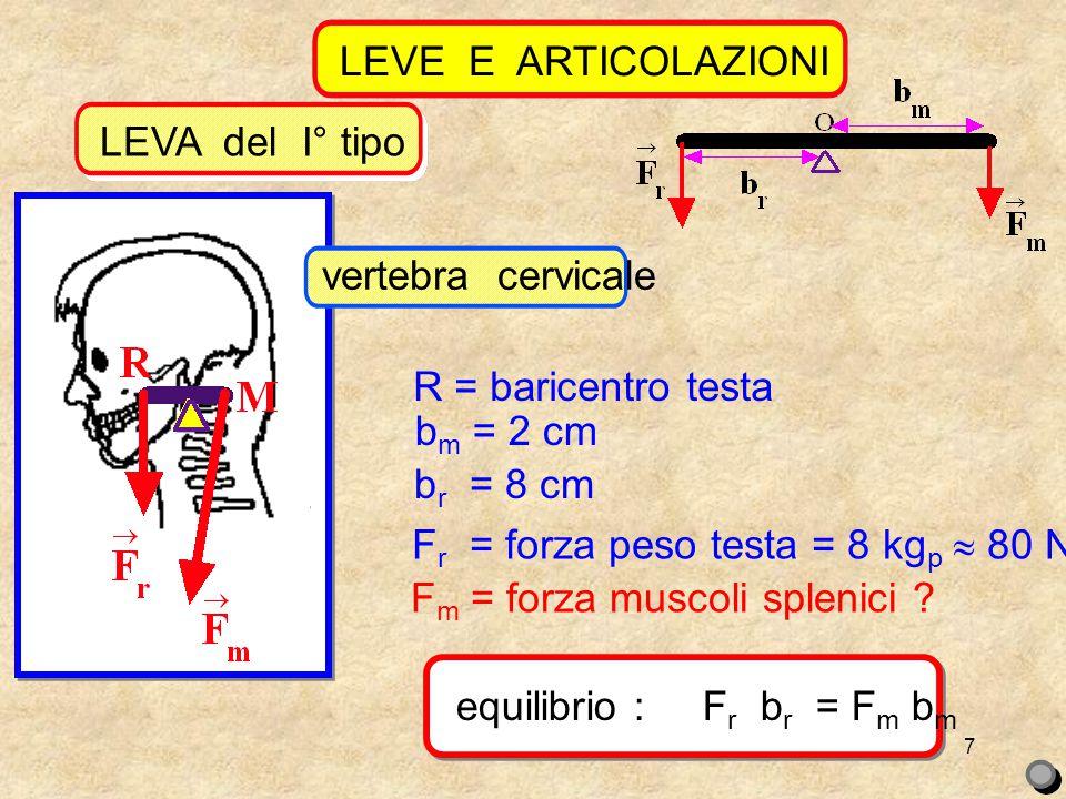 7 LEVE E ARTICOLAZIONI LEVA del I° tipo R = baricentro testa b m = 2 cm b r = 8 cm F r = forza peso testa = 8 kg p  80 N F m = forza muscoli splenici .