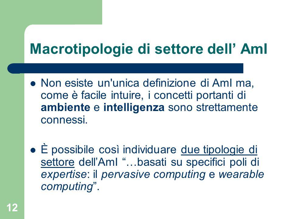 12 Macrotipologie di settore dell' AmI Non esiste un unica definizione di AmI ma, come è facile intuire, i concetti portanti di ambiente e intelligenza sono strettamente connessi.